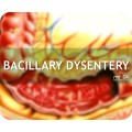 Bacilary Dyscentry