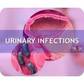 Urinary Infections